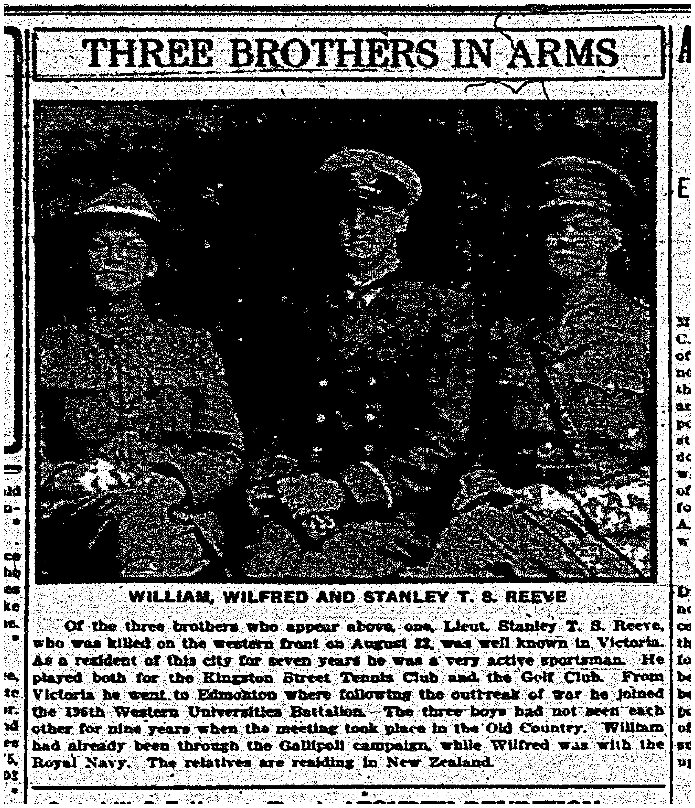 """Three Brothers in Arms: William, Wilfred and Stanley T.S. Reeve"""