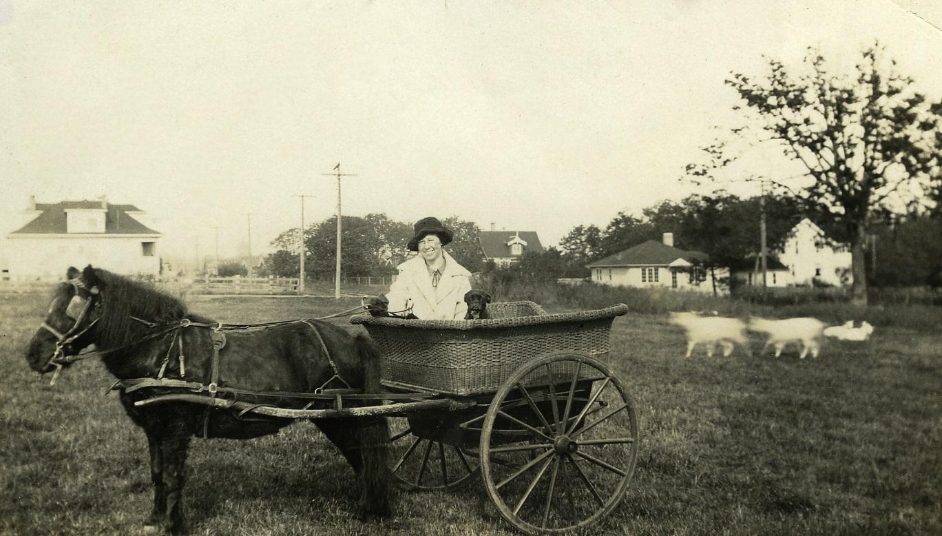 Uwins' Milk Cart