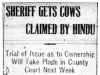 Sheriff Gets Hindu's Cows