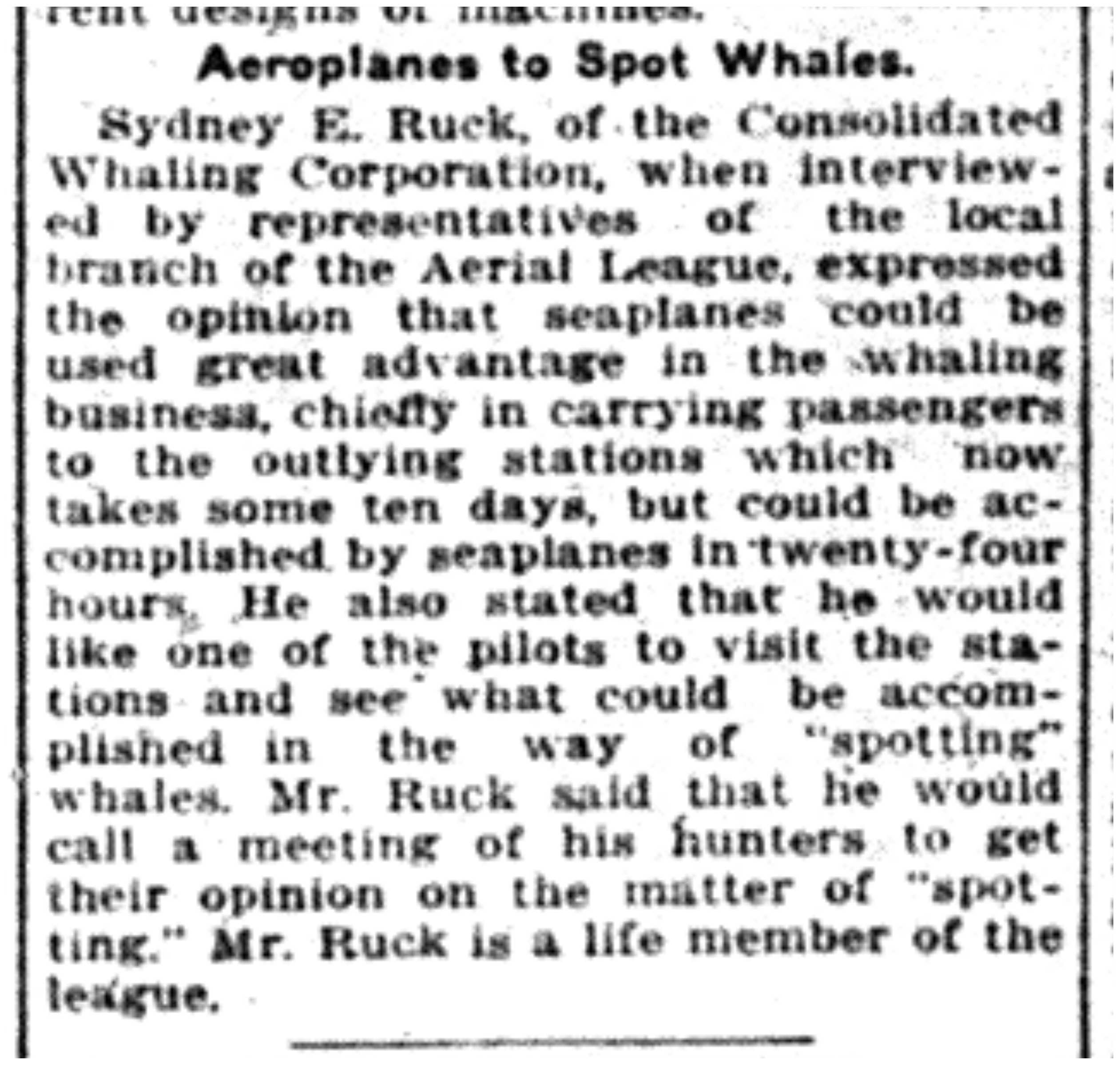 """Aeroplanes to Spot Whales"""